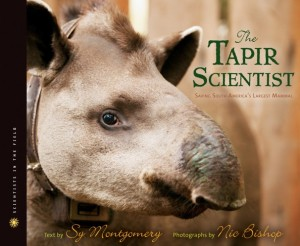 The Tapir Scientist