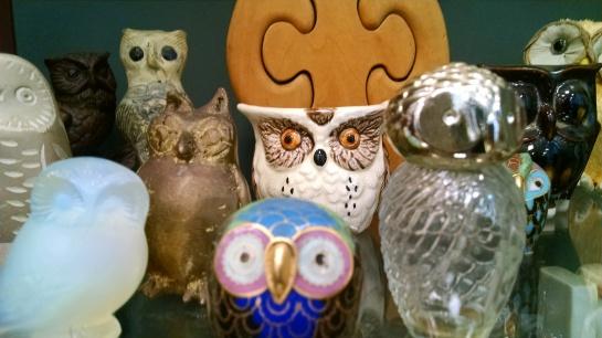 OwlsintheCase