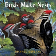 birds-make-nests